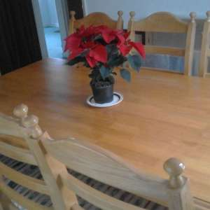 For sale: Dining Table / 6 Chairs / 2 Carvers