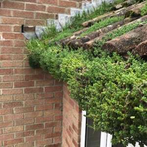 Have You Got Gutter Problems?
