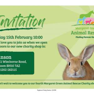Margaret Green Animal Rescue coming to Kinson