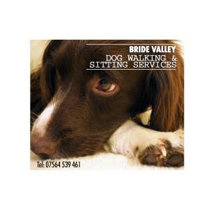 Bride Valley Dog Walking and Sitting